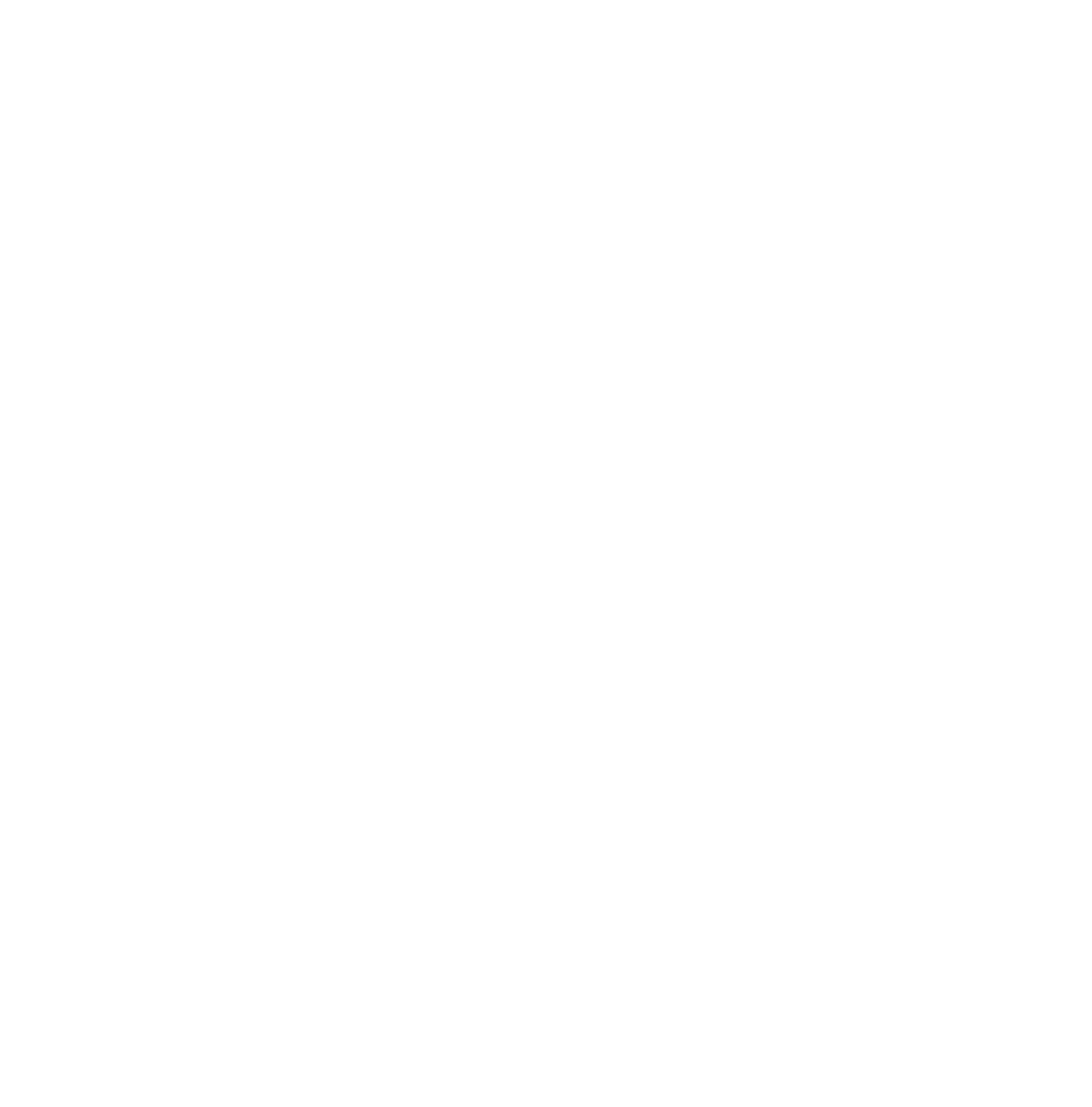 Bernd Hochholzer Logo rund